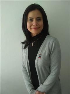 Agente Inmobiliario - Karina Obeso Lopez - RE/MAX Planet