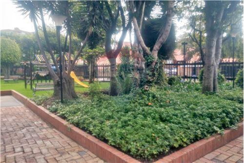 Jardín de Invierno