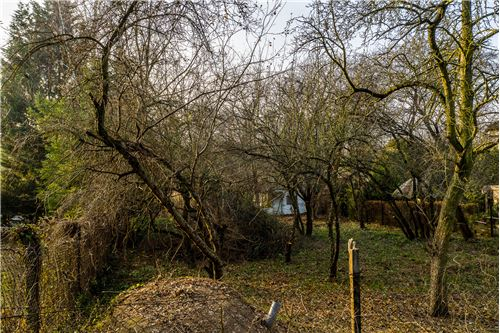 Land - For Sale - Chyby, Poland - 8 - 790121006-215