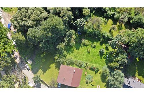 Land - For Sale - Bielsko-Biala, Poland - 59 - 800061039-131