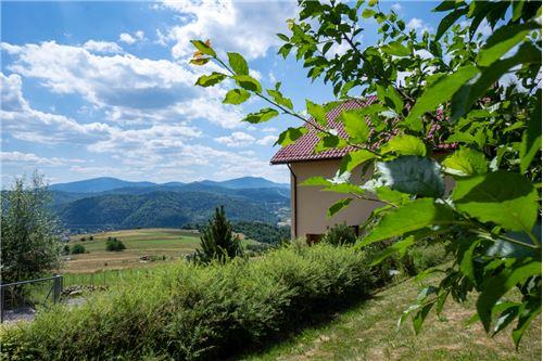 House - For Sale - Rychwałdek, Poland - 158 - 800061039-130