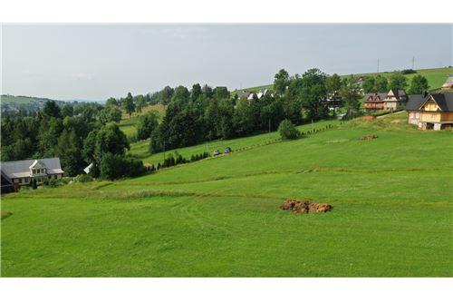Plot of Land for Hospitality Development - For Sale - Zab, Poland - 24 - 470151035-8