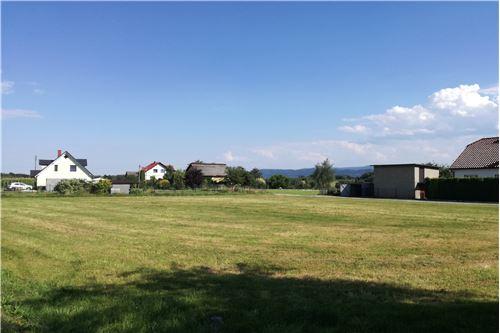 Land - For Sale - Wieprz, Poland - 23 - 800061076-106