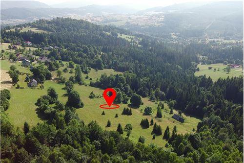 Plot of Land for Hospitality Development - For Sale - Sól-Kiczora, Poland - 28 - 800061076-120