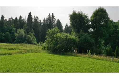 Plot of Land for Hospitality Development - For Sale - Zab, Poland - 16 - 470151035-8