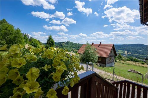 House - For Sale - Rychwałdek, Poland - 167 - 800061039-130