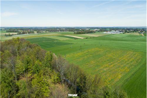 Plot of Land for Hospitality Development - For Sale - Nidek, Poland - 12 - 800061057-38