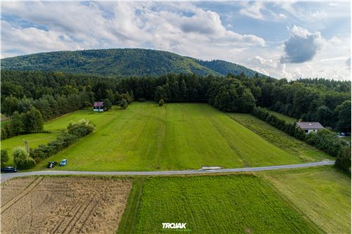 Land - For Sale - Czaniec, Poland - 14 - 800061057-48