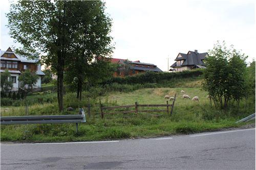 Plot of Land for Hospitality Development - For Sale - Szaflary, Poland - 10 - 800091015-40