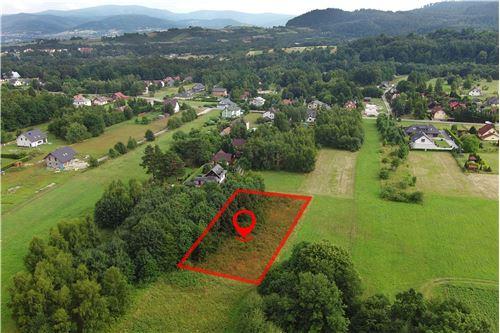 Plot of Land for Hospitality Development - For Sale - Lipowa, Poland - 3 - 800061087-4