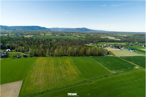 Plot of Land for Hospitality Development - For Sale - Nidek, Poland - 14 - 800061057-38
