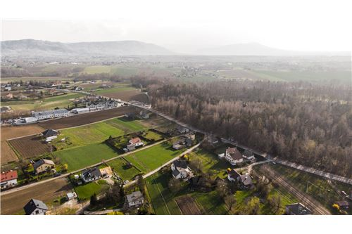 Land - For Sale - Wieprz, Poland - 38 - 800061076-106