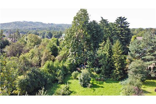 Land - For Sale - Bielsko-Biala, Poland - 62 - 800061039-131