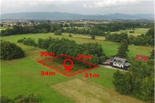Plot of Land for Hospitality Development - For Sale - Lipowa, Poland - 2 - 800061087-4