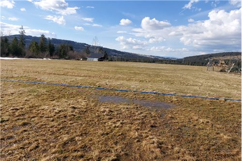 Plot of Land for Hospitality Development - For Sale - Witow, Poland - 14 - 470151035-13