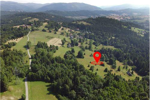 Plot of Land for Hospitality Development - For Sale - Sól-Kiczora, Poland - 4 - 800061076-120