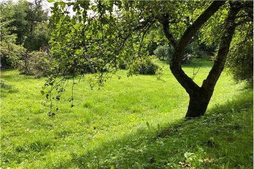 Land - For Sale - Bielsko-Biala, Poland - 75 - 800061039-131