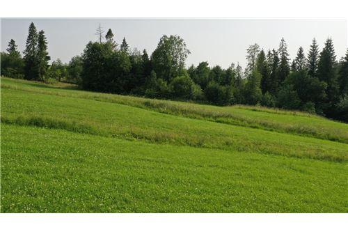 Plot of Land for Hospitality Development - For Sale - Zab, Poland - 17 - 470151035-8