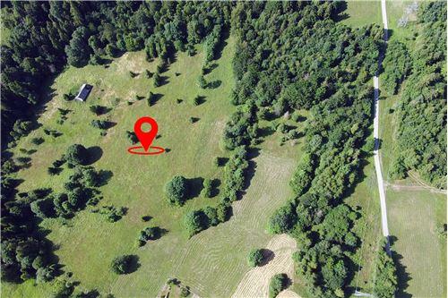 Plot of Land for Hospitality Development - For Sale - Sól-Kiczora, Poland - 23 - 800061076-120