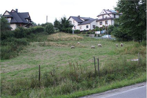 Plot of Land for Hospitality Development - For Sale - Szaflary, Poland - 8 - 800091015-40