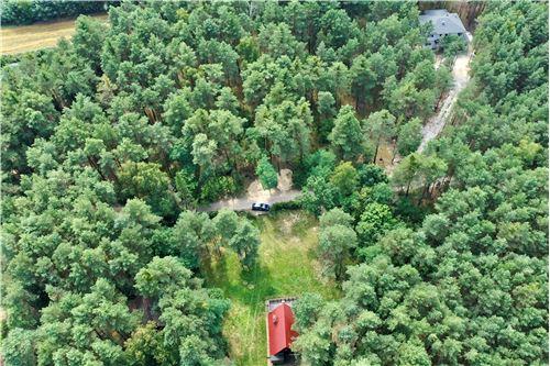 قطعة أرض للبناء - للبيع - Stare Załubice, Polska - 31 - 800061076-121