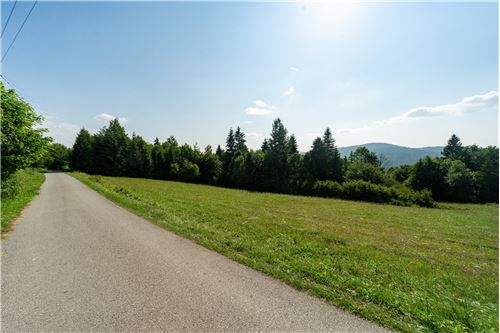 Plot of Land for Hospitality Development - For Sale - Sól-Kiczora, Poland - 31 - 800061076-120