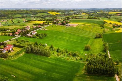 भूमि - बिक्री के लिए - Nowa Wieś, Polska - 43 - 800241006-9