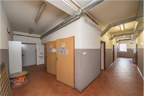 Industrial - For Sale - Czechowice-Dziedzice, Poland - 82 - 800061076-114