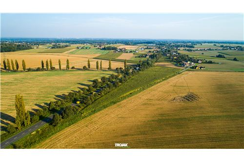 Investment - For Sale - Rudnik, Poland - 9 - 800061057-24