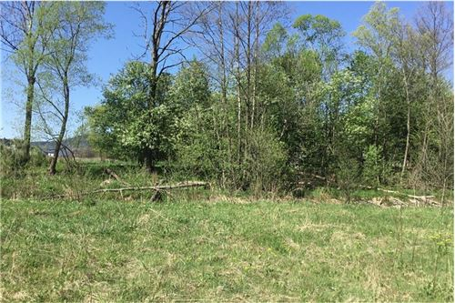 Land - For Sale - Lodygowice, Poland - 2 - 800061090-1
