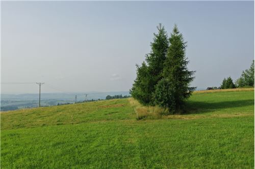 Plot of Land for Hospitality Development - For Sale - Sierockie, Poland - 26 - 470151035-25