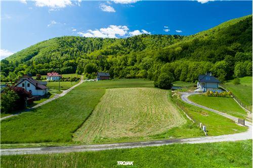 Plot of Land for Hospitality Development - For Sale - Porąbka, Poland - 17 - 800061057-43