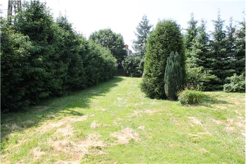 Plot of Land for Hospitality Development - For Sale - Zembrzyce, Poland - 5 - 800061057-41