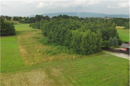 Plot of Land for Hospitality Development - For Sale - Lipowa, Poland - 11 - 800061087-4
