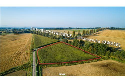 Investment - For Sale - Rudnik, Poland - 10 - 800061057-23
