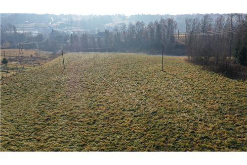 Plot of Land for Hospitality Development - For Sale - Naprawa, Poland - 3 - 470151035-6