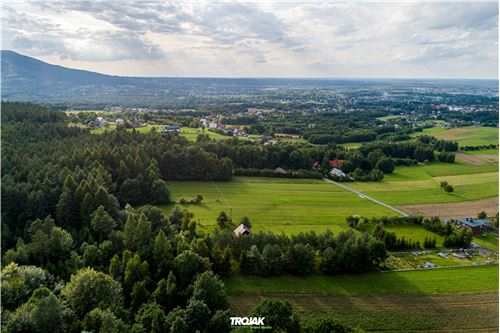 Land - For Sale - Czaniec, Poland - 5 - 800061057-48