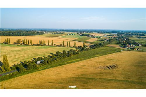 Investment - For Sale - Rudnik, Poland - 10 - 800061057-24