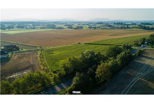 Investment - For Sale - Rudnik, Poland - 13 - 800061057-23