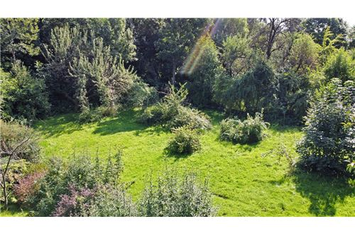 Land - For Sale - Bielsko-Biala, Poland - 66 - 800061039-131