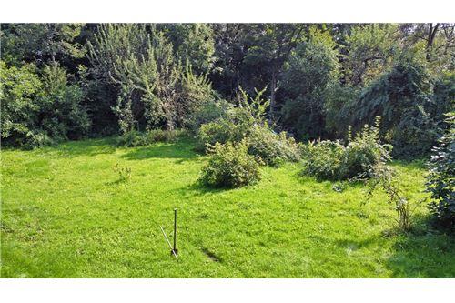 Land - For Sale - Bielsko-Biala, Poland - 71 - 800061039-131