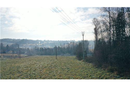 Plot of Land for Hospitality Development - For Sale - Naprawa, Poland - 10 - 470151035-6