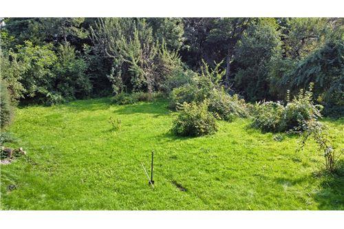 Land - For Sale - Bielsko-Biala, Poland - 72 - 800061039-131