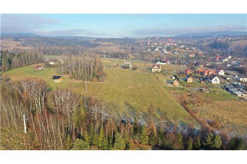 Plot of Land for Hospitality Development - For Sale - Naprawa, Poland - 11 - 470151035-6