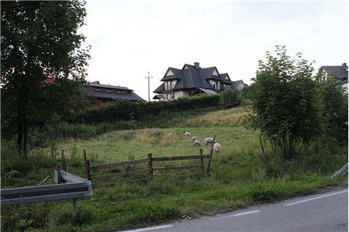 Plot of Land for Hospitality Development - For Sale - Szaflary, Poland - 12 - 800091015-40