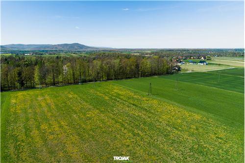 Plot of Land for Hospitality Development - For Sale - Nidek, Poland - 15 - 800061057-38