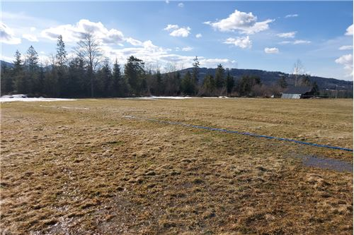 Plot of Land for Hospitality Development - For Sale - Witow, Poland - 13 - 470151035-13