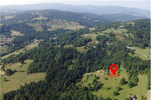 Plot of Land for Hospitality Development - For Sale - Sól-Kiczora, Poland - 17 - 800061076-120