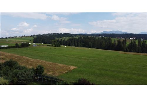 Plot of Land for Hospitality Development - For Sale - Dzianisz, Poland - 7 - 470151021-193