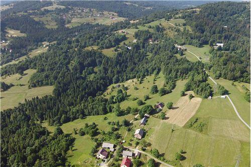 Plot of Land for Hospitality Development - For Sale - Sól-Kiczora, Poland - 19 - 800061076-120